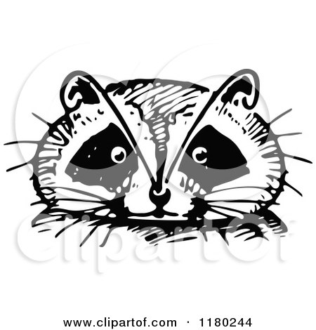 Clipart of a Retro Vintage Black and White Raccoon Face - Royalty Free Vector Illustration by Prawny Vintage