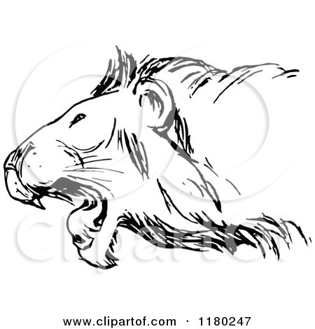Clipart of a Black and White Roaring Lion - Royalty Free Vector Illustration by Prawny Vintage