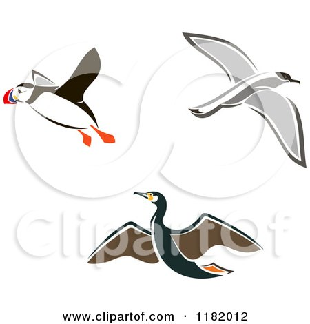 Clipart of Flying Puffin Albatross and Petrel Birds - Royalty Free Vector Illustration by Vector Tradition SM