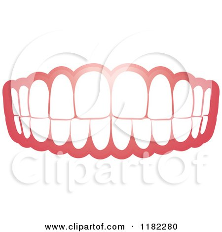 Clipart of a Human Teeth and Gums - Royalty Free Vector Illustration by Lal Perera