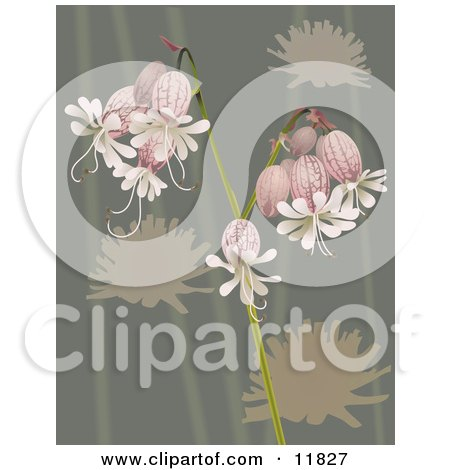 Pretty Bell Flowers Over Green Posters, Art Prints