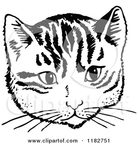 Royalty-Free (RF) Black And White Cat Clipart, Illustrations ...