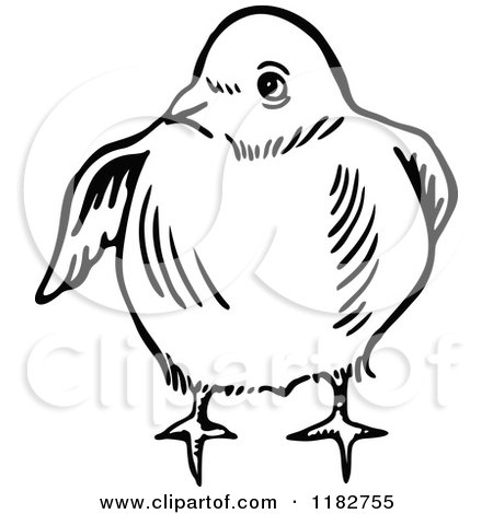 Clipart of a Black and White Chick 2 - Royalty Free Vector Illustration by Prawny
