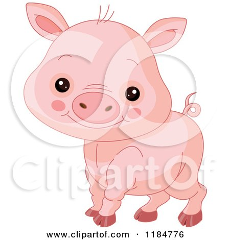 Cartoon of a Cute Baby Piglet Smiling - Royalty Free Vector Clipart by Pushkin