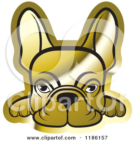Clipart of a Golden Frenchie Dog Looking over a Surface - Royalty Free Vector Illustration by Lal Perera