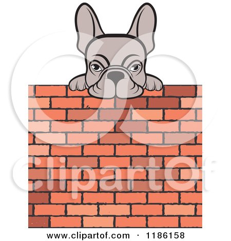 Clipart of a Frenchie Dog Looking over a Brick Wall - Royalty Free Vector Illustration by Lal Perera