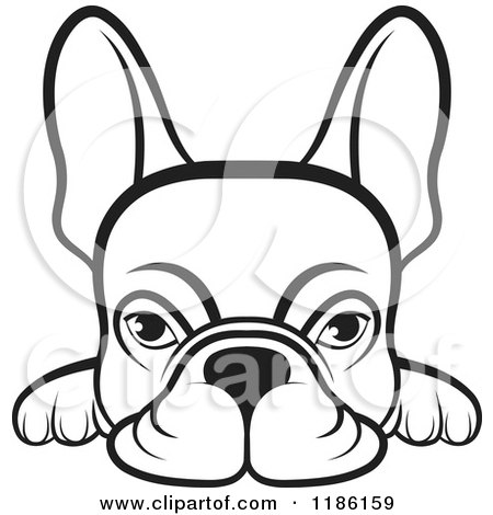 Clipart of a Black and White Frenchie Dog Looking over a Surface - Royalty Free Vector Illustration by Lal Perera