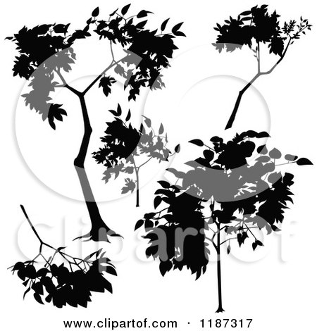 Clipart of Silhouetted Branches and a Tree - Royalty Free Vector Illustration by dero