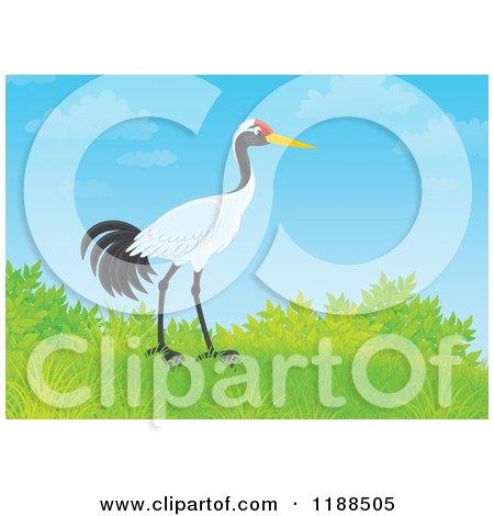 Cartoon of a Sarus Crane Bird on a Hill Against Blue Sky - Royalty Free Clipart by Alex Bannykh