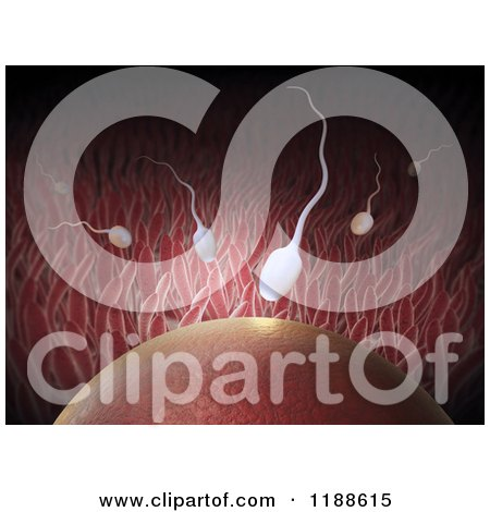 Clipart of a 3d Egg and Sperm at the Moment of Fertilization - Royalty Free CGI Illustration by Mopic