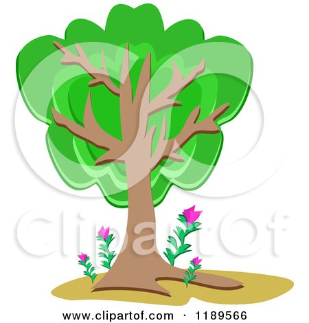 Cartoon of a Lush Tree with Pink Flowers at the Base - Royalty Free Vector Clipart by bpearth