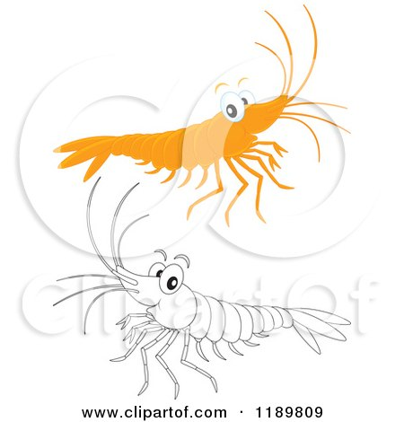 Cartoon of a Cute Happy Colored and Outlined Shrimp - Royalty Free Vector Clipart by Alex Bannykh