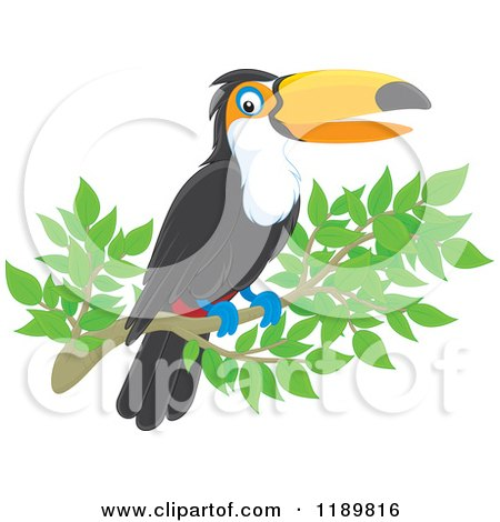 Cartoon of a Happy Toucan Bird on a Branch - Royalty Free Vector Clipart by Alex Bannykh