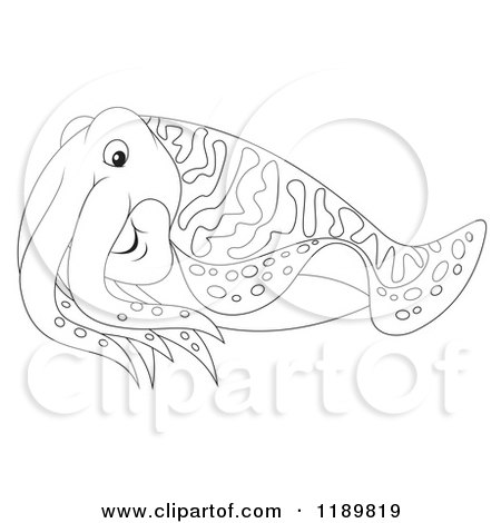Cartoon of a cute outlined cuttlefish royalty free for Cuttlefish coloring pages
