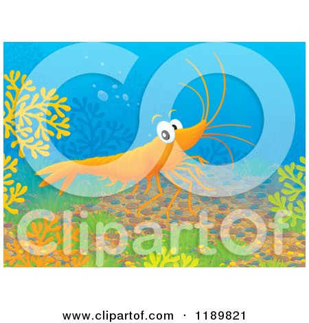 Cartoon of a Happy Shrimp Exploring Underwater - Royalty Free Clipart by Alex Bannykh
