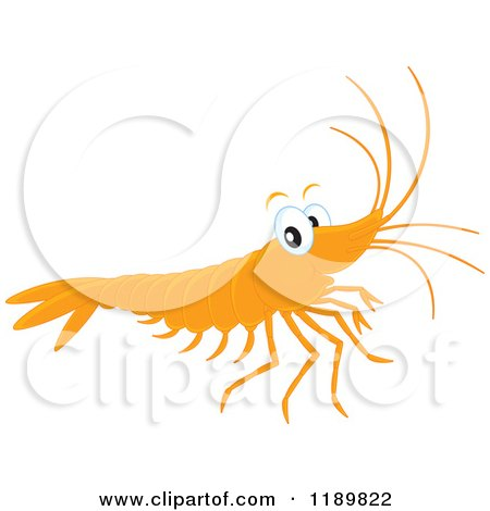 Cartoon of a Cute Happy Shrimp - Royalty Free Vector Clipart by Alex Bannykh