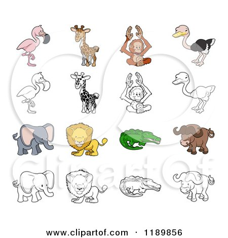 Cartoon of a Flamingo Giraffe Orangutan Ostrich Elephant Lion Crocodile and Buffalo in Color and Outline - Royalty Free Vector Clipart by AtStockIllustration