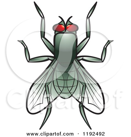 Royalty-Free (RF) Fly Clipart, Illustrations, Vector Graphics #1