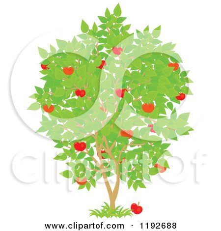 Royalty-Free (RF) Fruit Tree Clipart, Illustrations, Vector ...