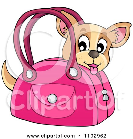 Cartoon of a Happy Chihuahua Dog in a Pink Bag - Royalty Free Vector Clipart by visekart