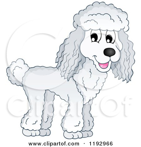 Cartoon of a Happy Poodle Dog - Royalty Free Vector Clipart by visekart