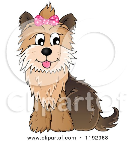 Cartoon of a Happy Yorkie Terrier Sitting, with a Pink Bow on Its Head - Royalty Free Vector Clipart by visekart