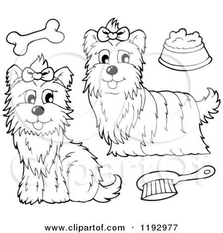 Cartoon of Black and White Yorkie Dogs with a Brush Bone and Food Bowl - Royalty Free Vector Clipart by visekart