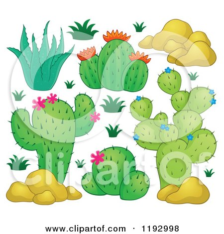 Cartoon Plants And Flowers Green Cacuts Plants With Pink