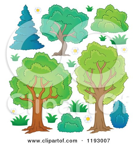 Cartoon of a Lush Trees with Shrubs and Flowers - Royalty Free Vector Clipart by visekart