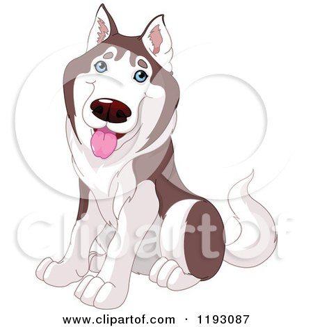 Cartoon of a Happy Cute Husky Dog Sitting - Royalty Free Vector Clipart by Pushkin