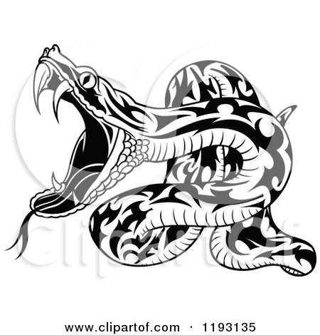 Clipart of an Attacking Black and White Snake - Royalty Free Vector Illustration by dero