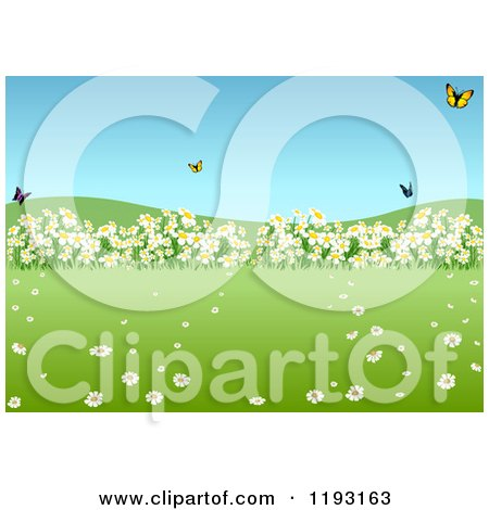 Clipart of a Spring Meadow with Butterflies and Wild Flowers - Royalty Free Vector Illustration by dero