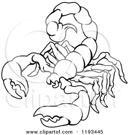 Clipart of a Black and White Line Drawing of the Scorpio Scorpion Zodiac Astrology Sign - Royalty Free Vector Illustration by AtStockIllustration