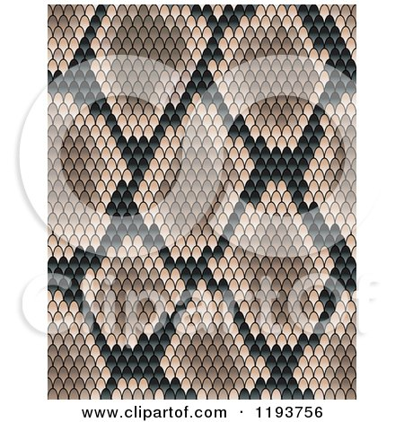 Clipart of a Brown Snake Skin Texture - Royalty Free Vector Illustration by Vector Tradition SM