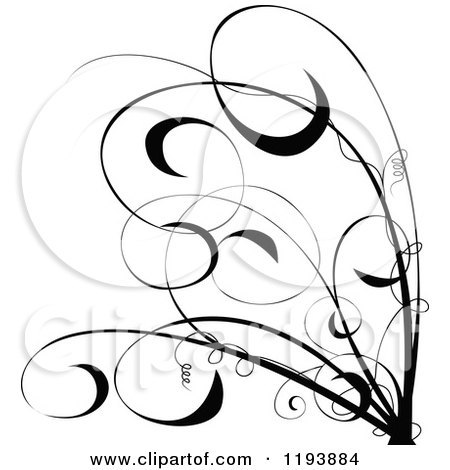 Clipart of a Black and White Scrolling Vine and Tendrils - Royalty Free Vector Illustration by dero