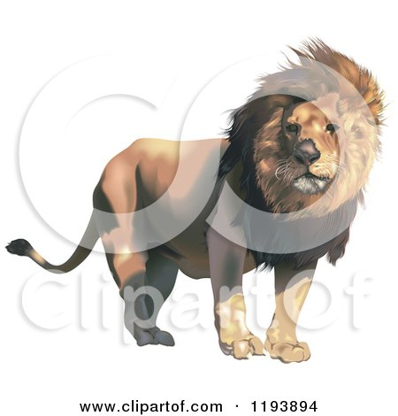 Clipart of a Male Lion with a Breeze Through His Mane - Royalty Free Vector Illustration by dero