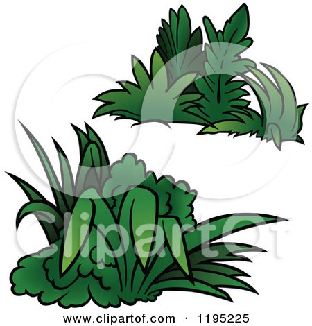 Cartoon of Green Shrubs - Royalty Free Vector Clipart by dero