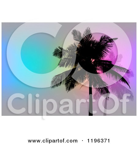 Clipart of Silhouetted Palm Trees over Gray with Colorful Lights - Royalty Free CGI Illustration by Arena Creative