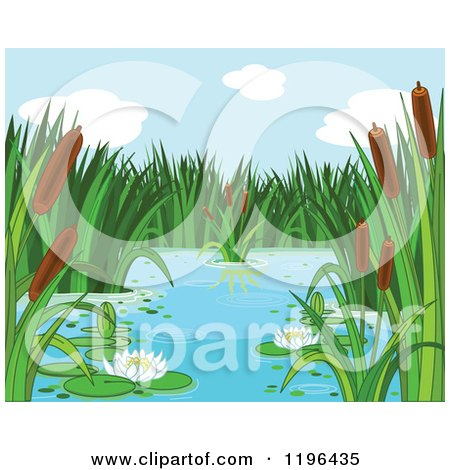 Cartoon of a Natural Pond with Cattails and Water Lilies - Royalty Free Vector Clipart by Pushkin