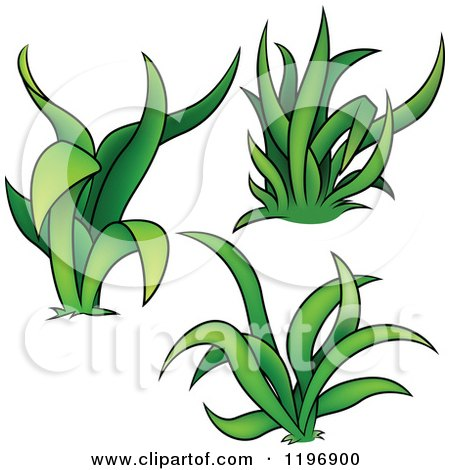 Cartoon of Tufts of Green Grass - Royalty Free Vector Clipart by dero