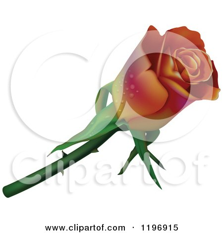 Clipart of a Gradient Rose with Dew - Royalty Free Vector Illustration by dero