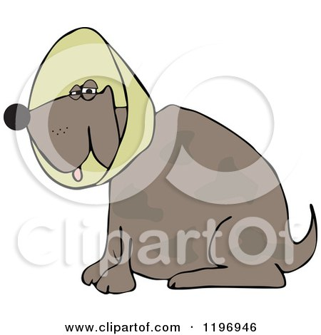 Cartoon of a Brown Dog Wearing an Elizabethan Colar Cone - Royalty Free Vector Clipart by djart