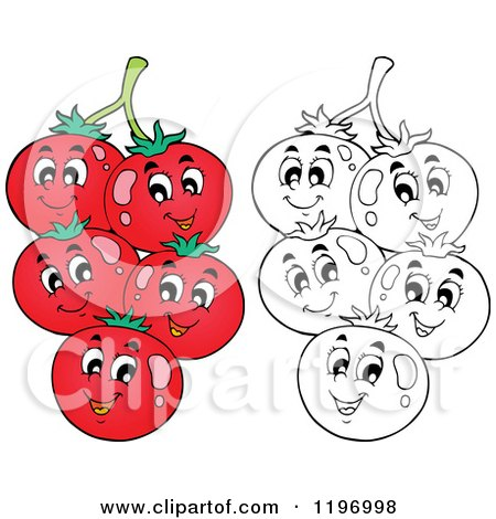 Cartoon of Happy Red and Outlined Tomatoes on the Vine - Royalty Free Vector Clipart by visekart