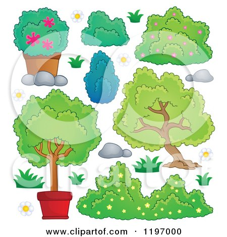 Cartoon Plant Bushes Shrubs Bushes Plants And Trees