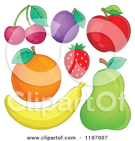 Cartoon of a Banana Pear Strawberry Red Apple Plum Orange and Cherries - Royalty Free Vector Clipart by visekart
