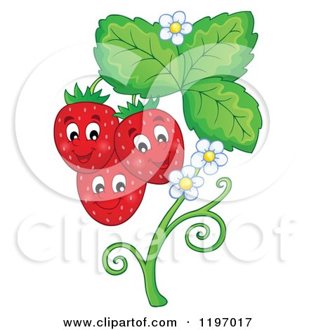 Royalty-Free (RF) Strawberry Clipart, Illustrations, Vector ...