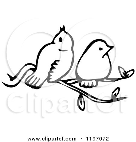 Clipart of Black and White Birds on a Branch - Royalty Free Vector Illustration by Prawny