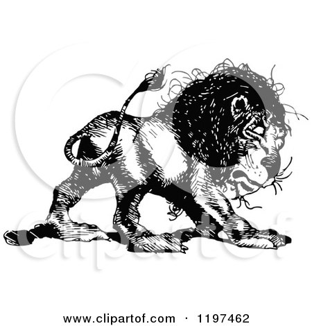 Clipart of a Vintage Black and White Lion - Royalty Free Vector Illustration by Prawny Vintage