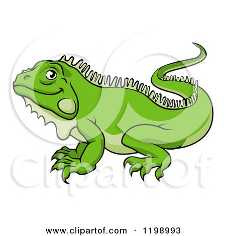 RoyaltyFree RF Iguana Clipart Illustrations Vector Graphics 1