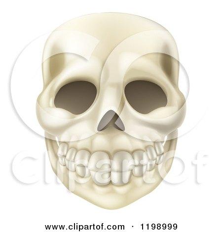 Cartoon of a Smiling Human Skull - Royalty Free Vector Clipart by AtStockIllustration